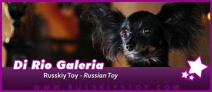 Russky Toy