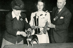 Mrs-Annna-Vinyard-showing-CH-La-Oro-Damisela-Top-Chihuahua-1946